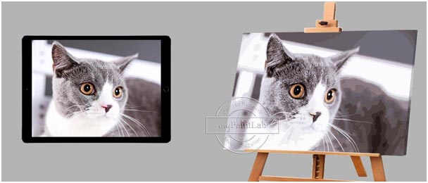 Personalized Paint by Numbers for Cats from myPaintLab