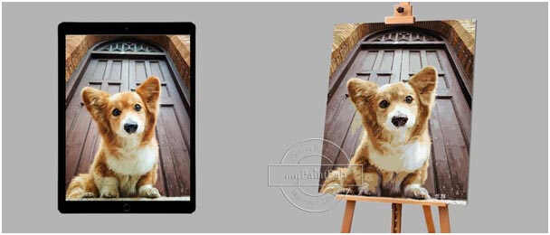 Customized Painting by Numbers kits for Dogs